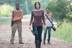 The Walking Dead Alone