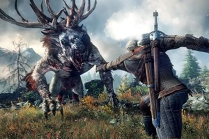 The Witcher 3 56777