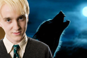 Harry Potter Draco Malfoy Werewolf