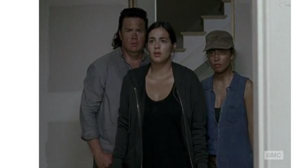 Daryl The Walking Dead