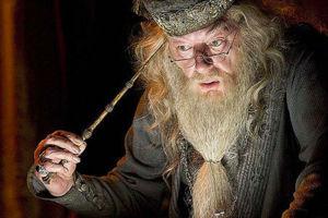 Dumbledore Pensieve