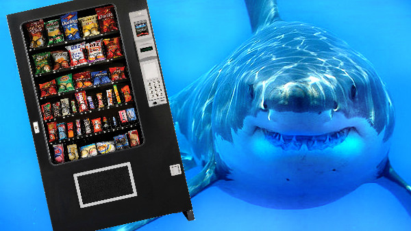 shark vending maching.jpg