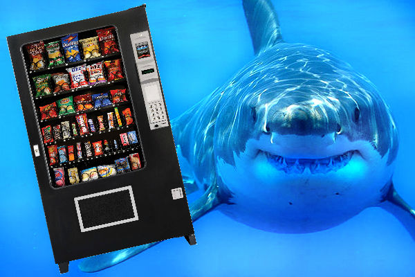 shark vending maching.jpg