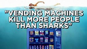 Vending Machines Sharks