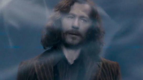Sirius Black Death Gary Oldman.jpg