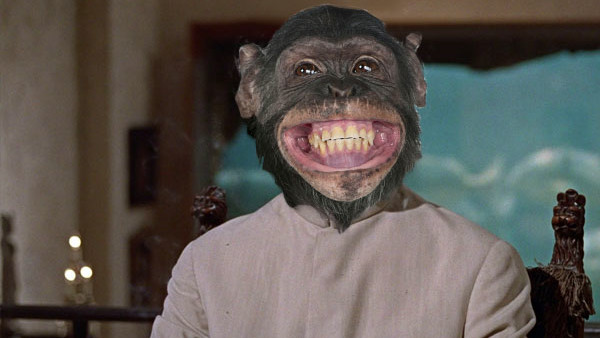 Monkey Dr No.jpg