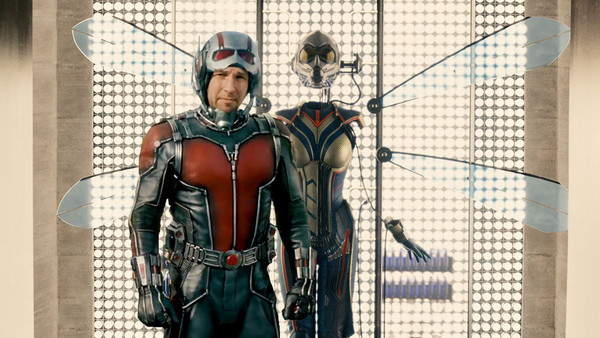 Ant-Man Wasp Costume Pic