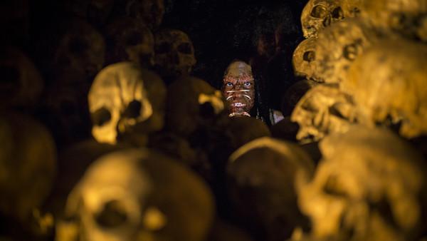 Skull Island Reign Of Kong_04
