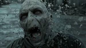 Harry Potter Voldemort Death