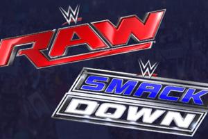 WWE BrandSplit
