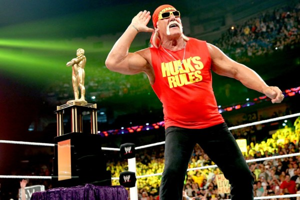 Image result for hulk hogan wwe