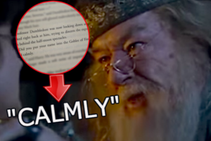 Goblet Of Fire Angry Dumbledore