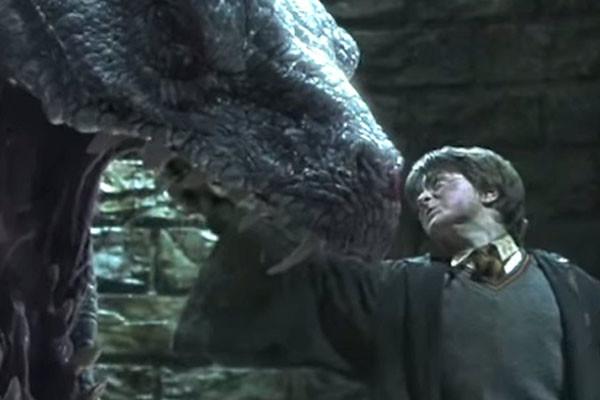 Harry Potter Basilisk Bite