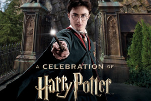 harry potter celebration