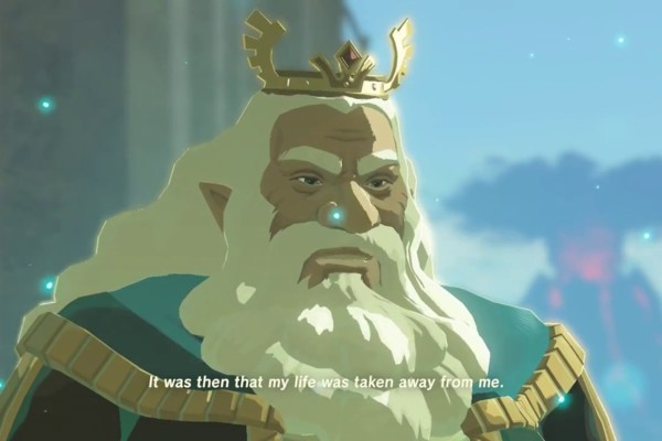 zelda king rhoam