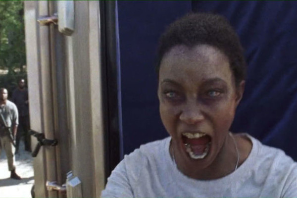 The Walking Dead Sasha walker