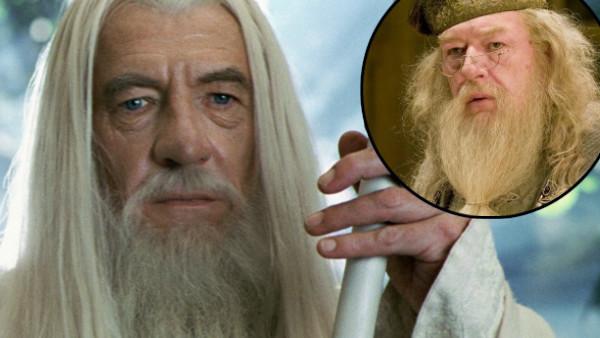 Ian McKellen Gandalf Dumbledore