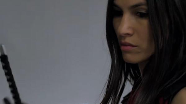 The Defenders Elektra