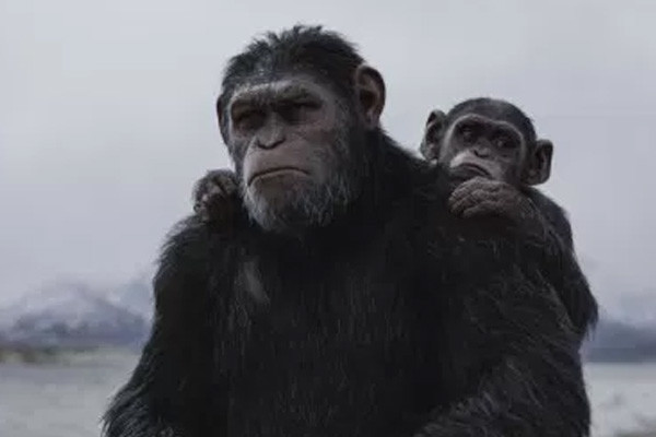 War For The Planet Of The Apes Cornelius