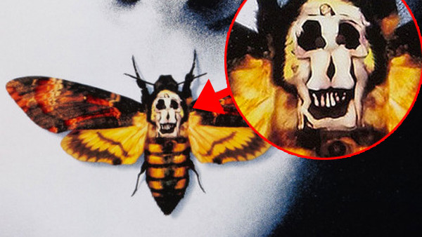Silence Of The Lambs Detail