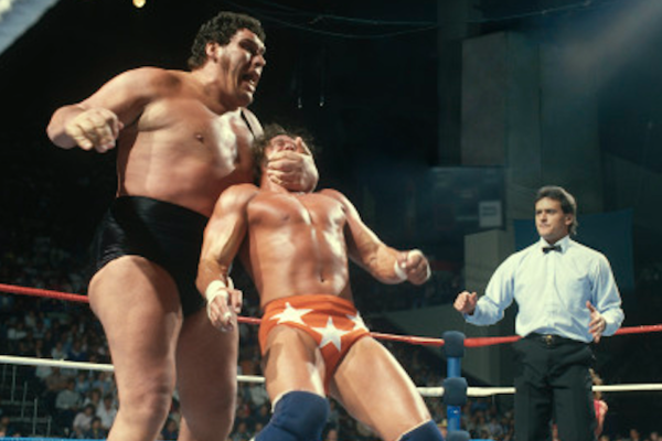 Andre The Giant Randy Savage