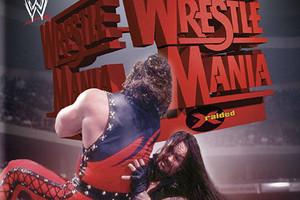 Undertaker Kane Wrestlemania