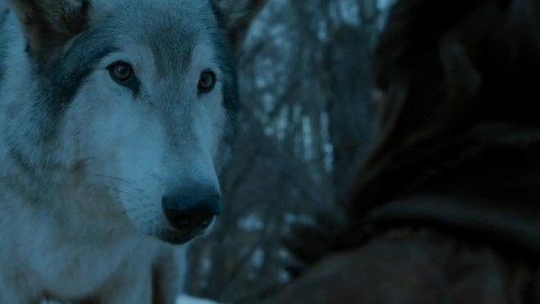 Game of Thrones Nymeria