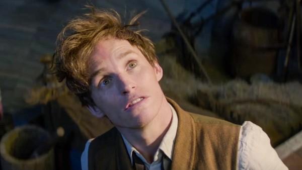 Newt Scamander Harry Potter