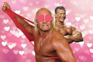 Vince McMahon Hulk Hogan