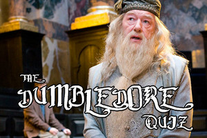 DUMBLEDORE QUIZ
