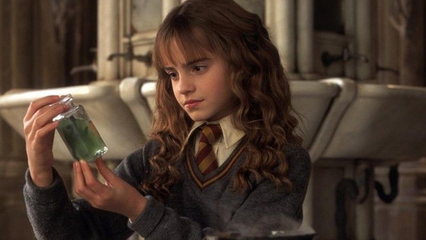 Harry Potter And The Chamber Of Secrets Tom Riddle Diary