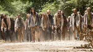 The Walking Dead Quiz: Did They Survive Or Perish?      quiz
