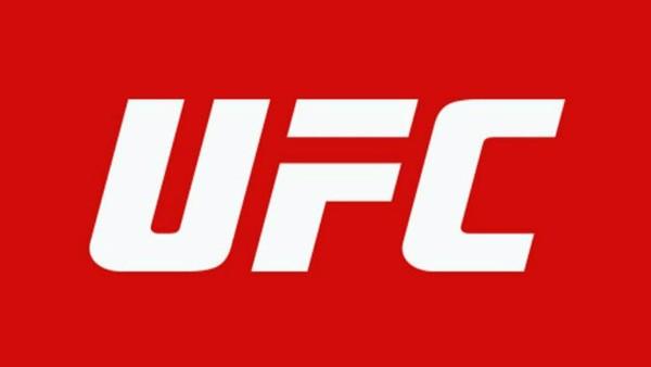 UFC 2 E1530016367428 960x540