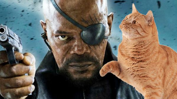 Nick Fury Cat