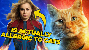 10 Fascinating Facts About Captain Marvel (2019)