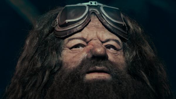 Hagrid Universal Orlando Harry Potter