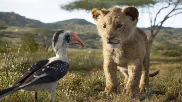 The Lion King Zazu Simba