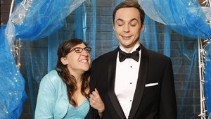 Sheldon And Amy The Big Bang Theory
