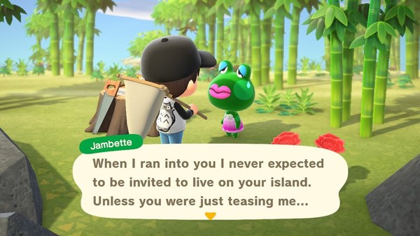10 Worst Villagers In Animal Crossing: New Horizons - Page 6