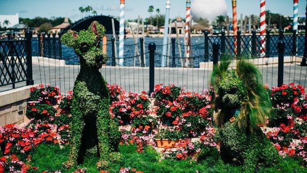 Walt Disney World Epcot Flower and Garden