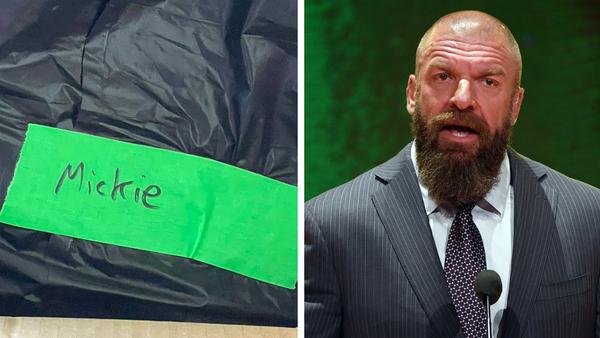 Triple H Mickie James Bin bag