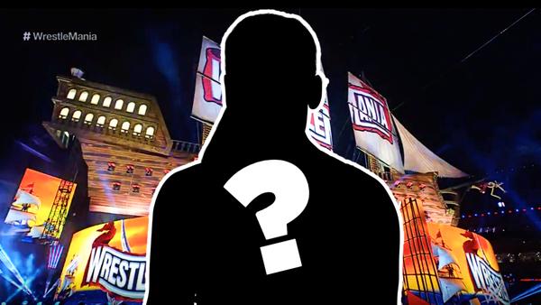 Natalya silhouette