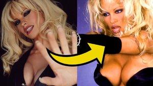 Lily James Pamela Anderson