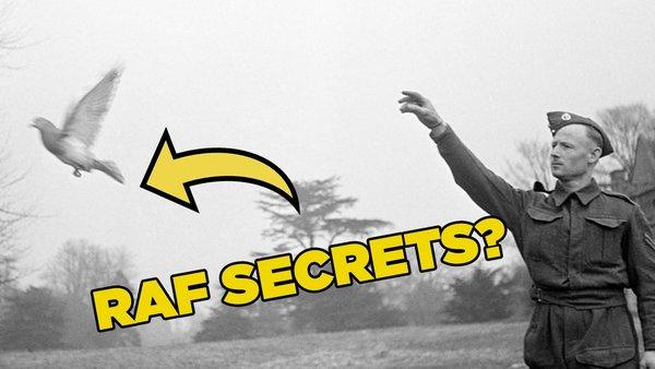 RAF secrets