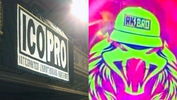 WWE ICO PRO RK-Bro